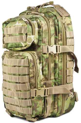 Reppu Mil-Tec US Assault pack 20l W/L-arid